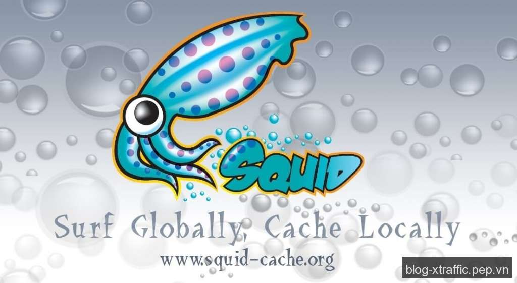 Cách cài đặt Squid Proxy trên CentOS - proxy squid - Webmasters Tools
