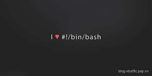Tự học Linux : Console, terminal ảo và shell - bash console Linux shell terminal - Phát triển website