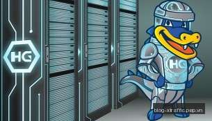 Web Hosting - VPS - Server HostGator
