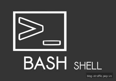 Linux Bash Shell